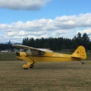 yellowcub@msn.com